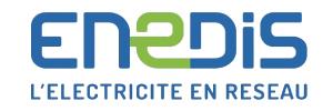 ENEDIS - logo